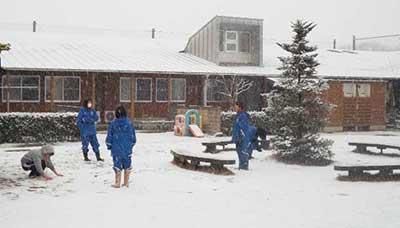 中庭に降った雪